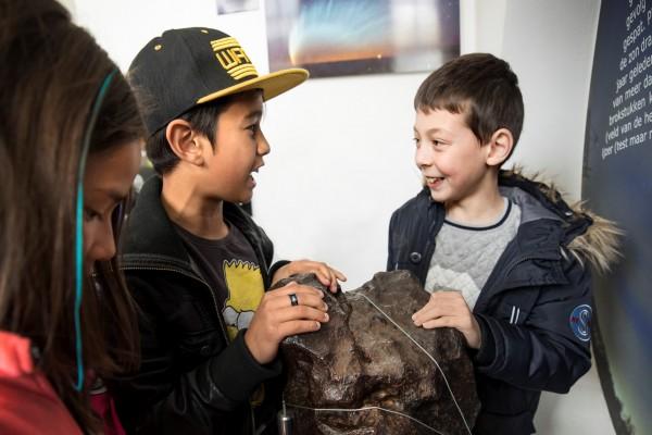 De meteoriet van Sonnenborgh aangeschaft dankzij donaties