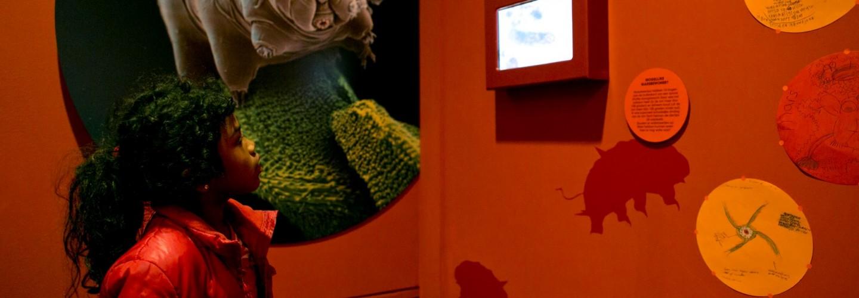 Maak je eigen superdier in de tentoonstelling Spoorzoeken op Mars
