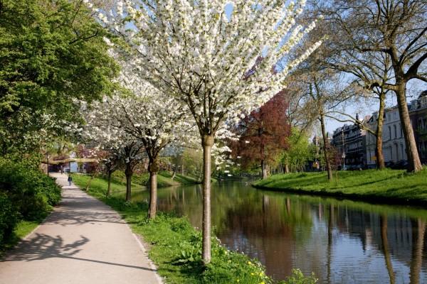 Walking to Sonnenborgh along the Singel